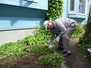 園芸療法で作業中の女性